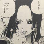 【ワンピース】世界三大美女、ハンコック・しらほし・小紫について思うこと!