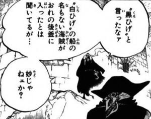 黒ひげとクロコダイル対面