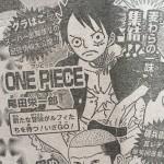"""【ワンピース】第800話確定ネタバレ""""夢の足がかり""""考察!新展開予想!(画像あり)"""