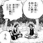 【ワンピース】ウソップ徹底考察!〜懸賞金は2億超え〜