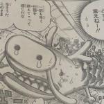 【ワンピース】リューノスケが可愛い!マスコット的キャラクターに参戦か?