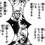 【ワンピース】錦えもんの悪魔の実はフクフクの実で確定か?