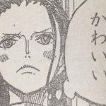 【ワンピース】ロビンの美的センスがおかしいことが確定した模様!