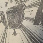 【ワンピース】804話「ゾウの背の国の冒険」ネタバレ確定感想&考察!