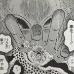 【ワンピース】ドフラミンゴにまつわる謎と伏線、聖地から堕天した復讐のカリスマ![超考察]