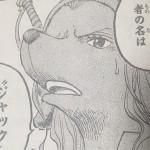 【ワンピース】ゾウを滅ぼした者の名はジャック…!!!彼の動向は?