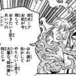 【ワンピース】不足する戦力、カイドウを倒すのに欲しい逸材について!