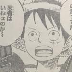 【ワンピース】ルフィ「なんだ忍者はいねェのか」発言の意味、一同冷や汗!