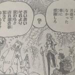 【ワンピース】月夜の晩に何かが起こる?ゾウ&ミンク族追加情報!