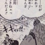 【ワンピース】青雉は革命軍?「予想通りには動かない男」の動向と、透けて見える黒ひげ↔カイドウの関係性!