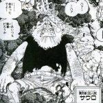 [B]ハグワール・D・サウロ↔真実を伝えにロビンを追ってくる?/Dの意思を紡ぐ巨人族について!