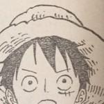【ワンピース】赤髪海賊団の背中に光月一族の家紋?ルフィは何かに気づいている可能性!