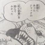 【ワンピース】ジャック死亡記事×ウィーブル登場時期、同一人物説は微妙?