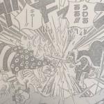 【ワンピース】ミンクの王とその実力、ロジャー時代の英傑について!
