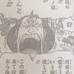 【ワンピース】817話「つながり」ネタバレ確定予想&考察!