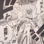 【ワンピース】弾糸vsホークウィップ(鷹鞭)のカット考察、覇王色の二人!