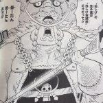 【ワンピース】802話「ゾウ」ネタバレ確定感想&考察!