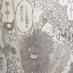 【トリコ】グルメ363話「災害の本気!!」確定ネタバレ&考察!