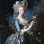 【ワンピース】貴族社会と恐怖政治について、フランス革命とナポレオンなどの絡みはあるのか?