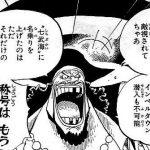 【ワンピース】黒ひげの不可解で奇妙な行動と、狙い撃つ未来!