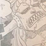 【ワンピース】マンモスの剛力×魚人の水圧、ゾオン系の悪魔の実を食べた魚人の恐ろしさ!