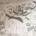 【ワンピース】トリトリの実・クロウの強さ&背景考察、または覚醒の有無について!