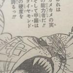 【ワンピース】カメマムシの甲羅がダイヤモンド?ペコムズとカメカメの実について。