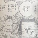 【ワンピース】822話「下象」ネタバレ確定感想&考察!