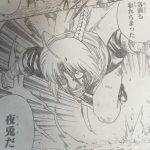 【銀魂】第587話「すっとこどっこい」ネタバレ感想&考察!
