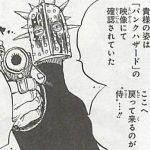 【ワンピース】鉄仮面「Freeze!」錦えもんを追っていた男の正体は?