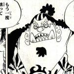 【ワンピース】ジンベエ仲間入りの流れは来るか?通す仁義とサンジ奪還!