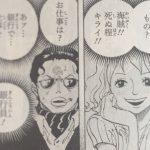 【ワンピース】セニョール・ピンクの過去は何回読み返しても泣ける!