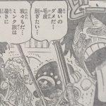【ワンピース】大変だったルフィの歩み(WCI編)ダイジェスト考察!