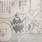 【ワンピース】タマゴ体型のキャラ考察3選、シルエットから見る人物像!