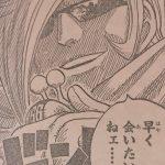 【ワンピース】スパーキングレッド&デンゲキブルー、真実味を帯びる血液型の仮説!