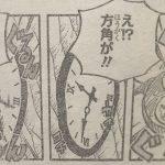 【ワンピース】ミラミラの実の否定、時間と方角が狂う森・全てがチグハグに振る舞う場所!