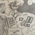 【ワンピース】鶴騎士ランドルフはミンクではない?かといって…。