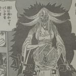 【ワンピース】ミラミラの実とブリュレの異質、特別な能力を理解しておこう!