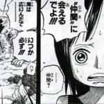 【ワンピース】デレシシシ!ロビンの「幸せの定義」を考察してみよう!
