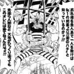 【ワンピース】手がいっぱいある戦士6選考察、彼らの強みは何だ?