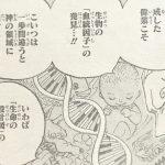 【ワンピース】遺伝子操作の疑いがあるキャラ3選考察、何を持ってしてヒトなんだろう?