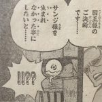 【ワンピース】サンジが悪いやつだったら同情する人は今より少なかったんだろうか?