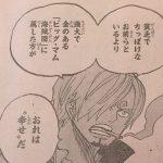 【ワンピース】844話「ルフィvsサンジ」ネタバレ確定感想&考察!