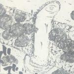 【ナルト】滝壺(たきつぼ)の術考察、人間とチャクラの絡みが環境に与える影響…。