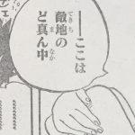 【ワンピース】845話「怒りの軍団」ネタバレ確定感想&考察!