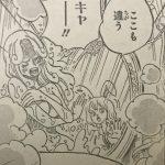 【ワンピース】850話「一筋の光」ネタバレ確定感想&考察!
