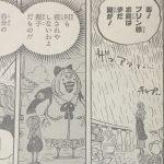 【ワンピース】プリンが完全に悪だと断定できない2つの点について!