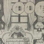 【ワンピース】849話「鏡の国のチョニキ」ネタバレ確定感想&考察!