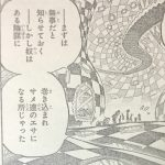【ワンピース】858話共闘×バランス×西の海のギャング!ネタバレ確定予想&考察!