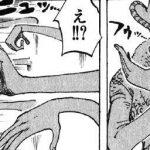 【ワンピース】十六輪咲き(ディエシセイスフルール)考察、門を守護するハナハナの手!